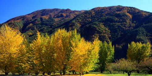 中川村から見上げる陣馬形山