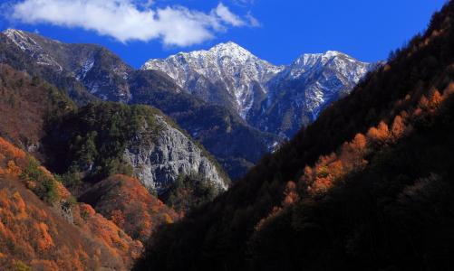 紅葉の谷に屹立する東駒ヶ岳