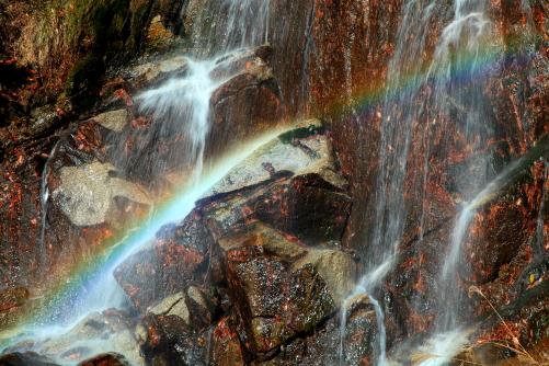 大鹿村へ行く途中の滝