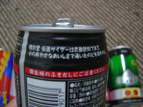DSC09211_convert_20100815180333.jpg