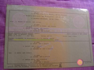 DSC09449_convert_20100901142045.jpg
