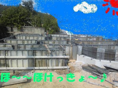 DVC00367_convert_20100728163020_20100801172225.jpg