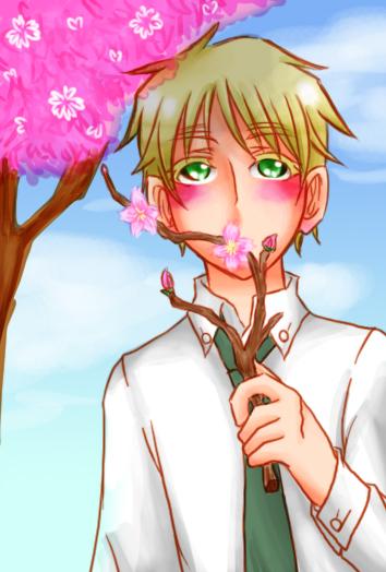 桜アーサー