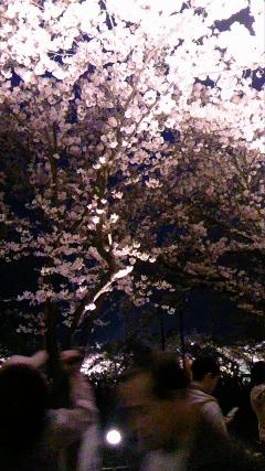 spring7.jpg
