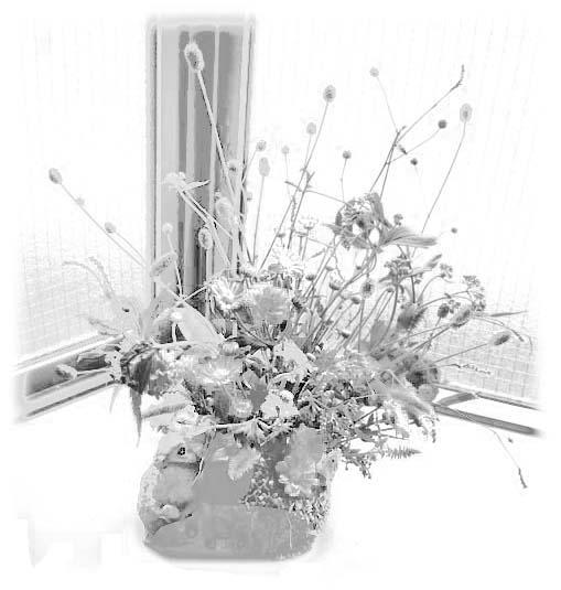 花のぬりえ1