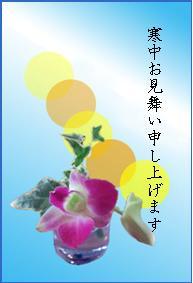 寒中見舞い 胡蝶蘭