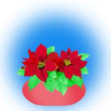 $便箋 無料 ダウンロード・便箋・桜のレターセット・封筒・クリスマスカード・ぬりえ無料・絵本・本★all無料ブログラバー-ポインセチアのイラスト