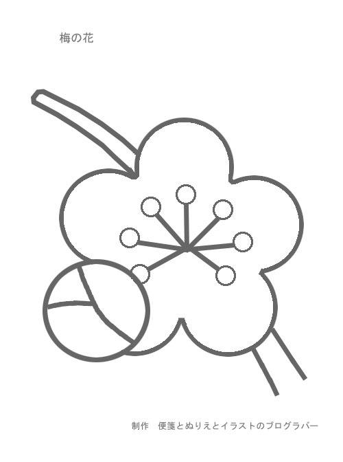 $便箋 ・ぬりえ無料ダウンロード・ぬりえ無料・桜のレターセット・イラスト無料・グリーティングカードall無料ブログラバー-梅の花ぬりえ