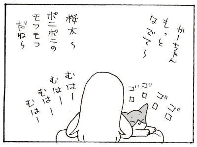 348-9.jpg