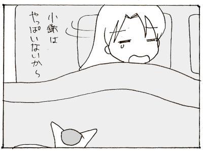 358-5.jpg