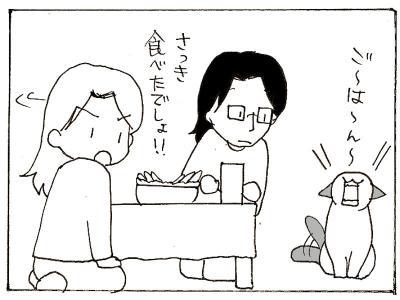 361-4.jpg