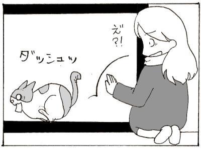 362-6.jpg