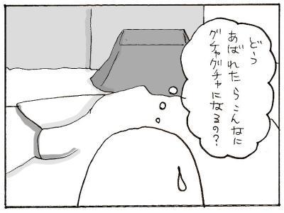 365-8.jpg