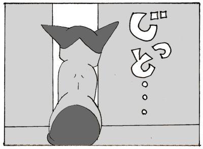 510-3.jpg