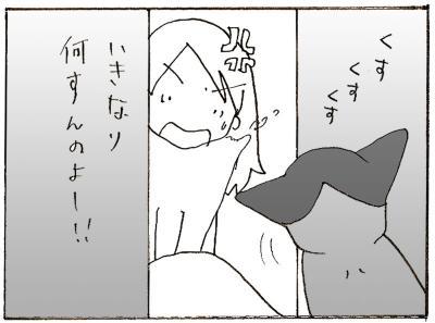 510-5.jpg