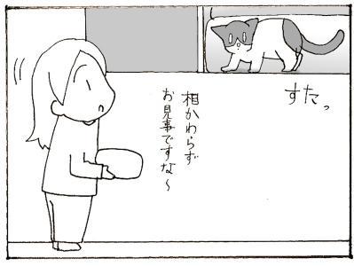 511-2.jpg
