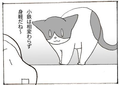 511-3.jpg