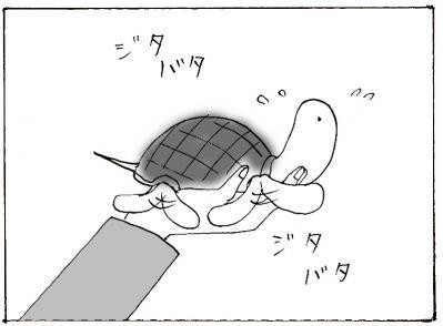 516-3.jpg