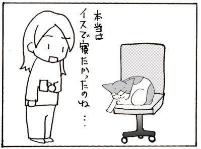 531-4.jpg