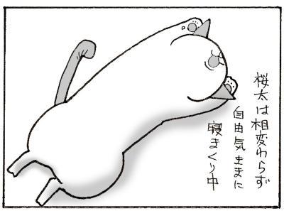 555-3.jpg