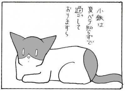 555-4.jpg