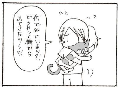 558-3.jpg