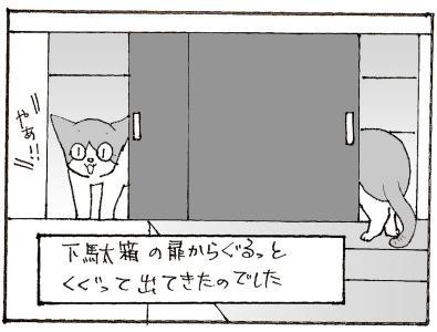 558-4.jpg