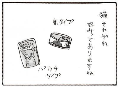 559-1.jpg