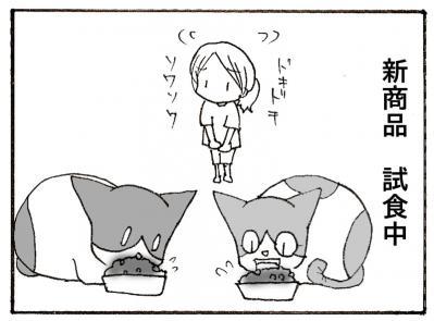 559-2.jpg