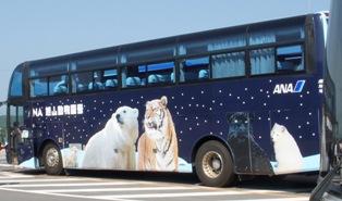 100614ana-bus12.jpg