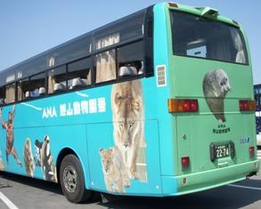 100614ana-bus13.jpg