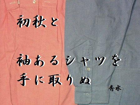 nagasode01.jpg