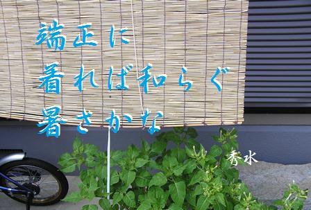 tansei.jpg