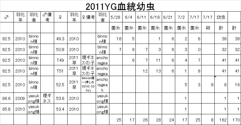 2011YG血統幼虫0717