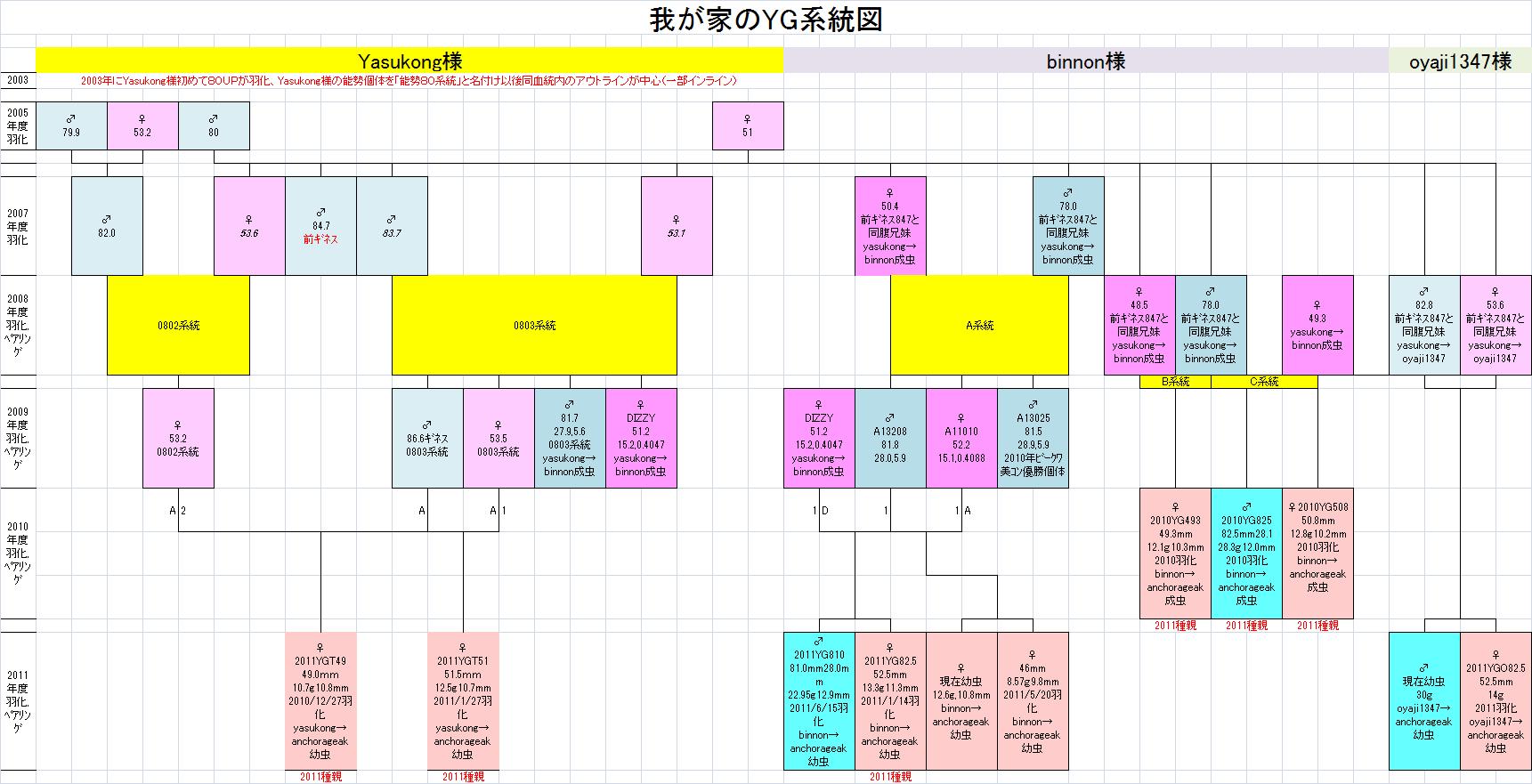 我が家のYG系統図