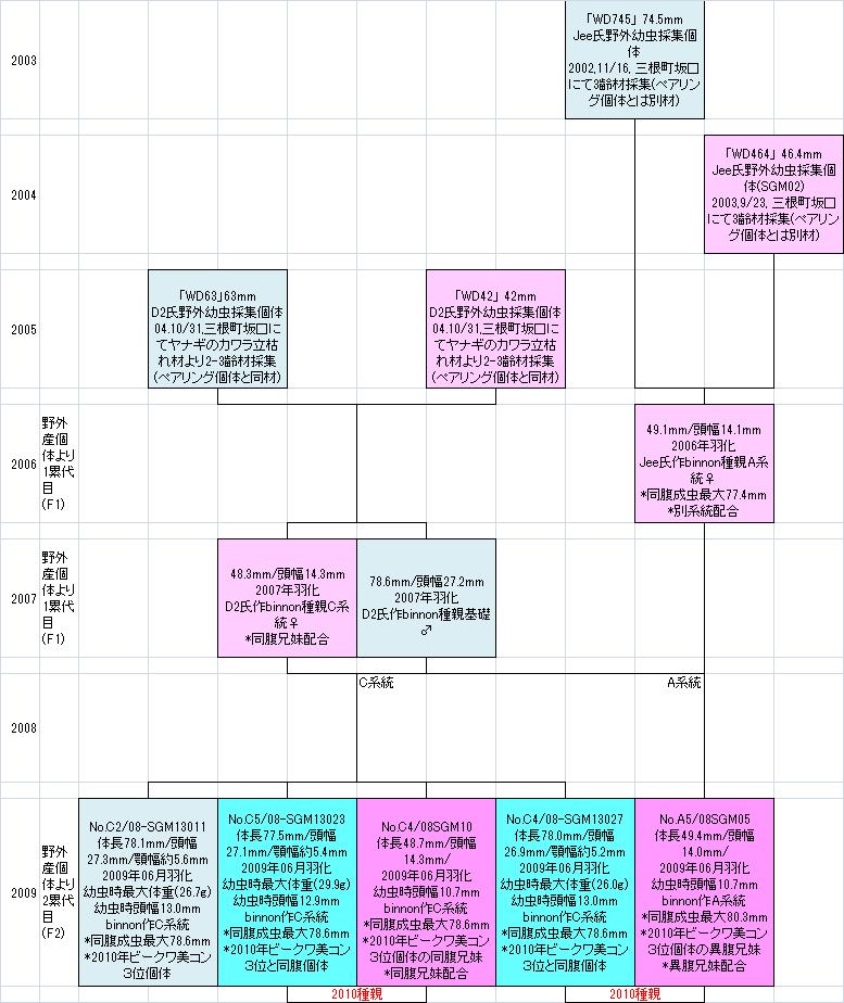 みやき町坂口系統図