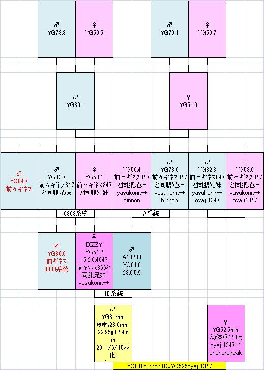 810525oyaji1347系統図