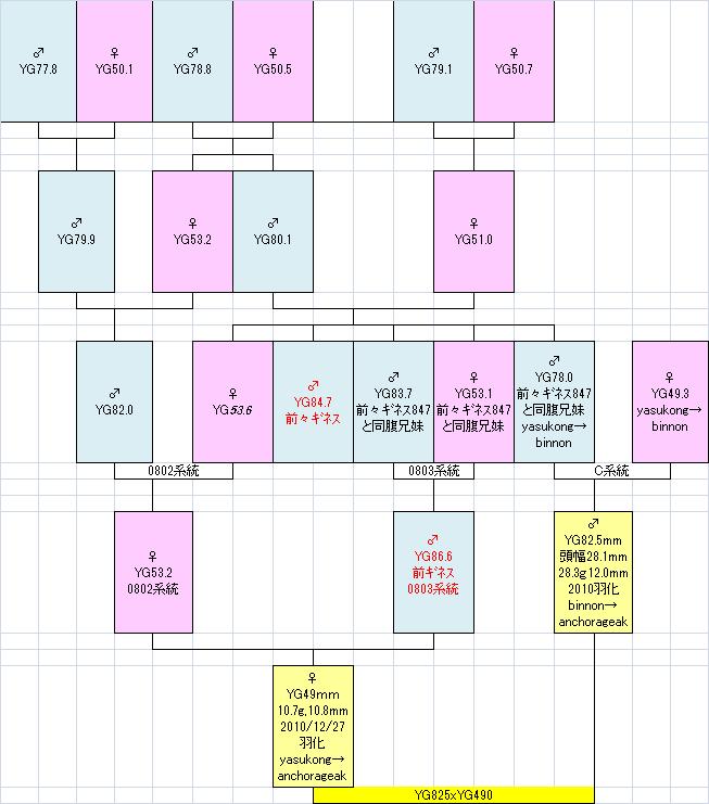 825490系統図