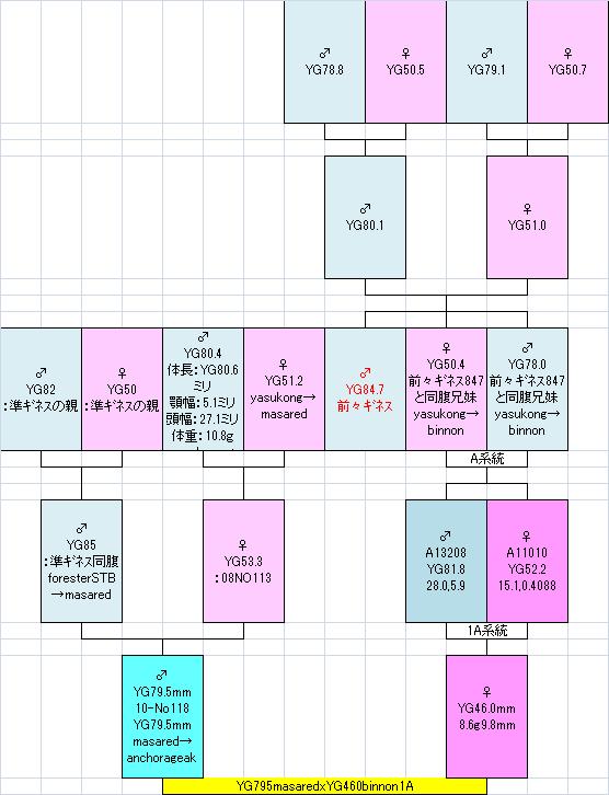 795masared460binnon1A系統図