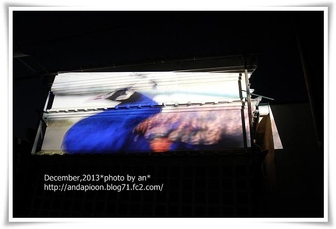 20131207_5381.jpg