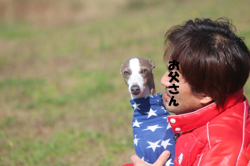 IMG_2968.jpg