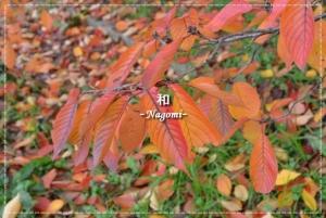 ブログ13
