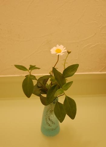 14)洗面所