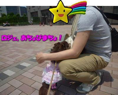 image10_20110604200914.jpg