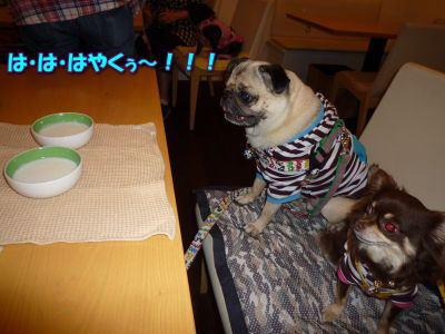 image16_20110531234157.jpg