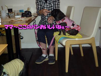 image18_20110531235429.jpg