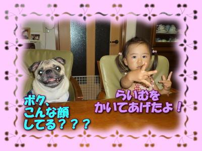 image1_20100819014857.jpg