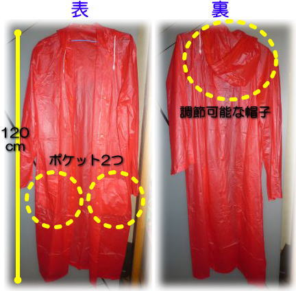 image1_20110607183319.jpg