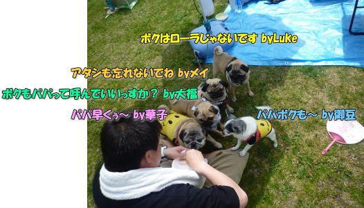 image3_20110527192123.jpg
