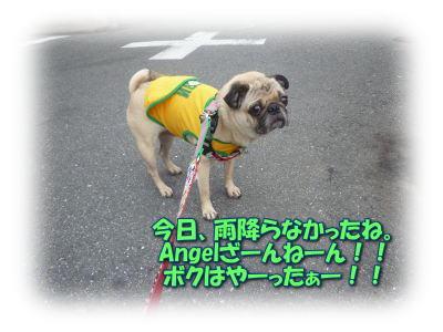 image3_20110607183318.jpg